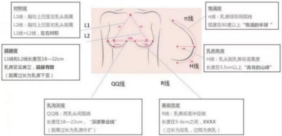 专访丰胸大师赵弘宇 内窥镜定制隆胸